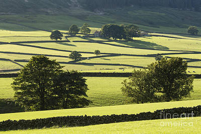 Bransdale The North Yorkshire Moors England Print by John Potter
