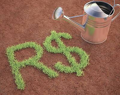 Brazilian Photograph - Brazilian Real Sign And Watering Can by Ktsdesign