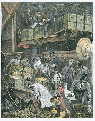 Trade Drawing - Breaking Bulk On Board A Tea Ship by William Bazett Murray