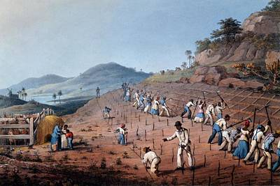 Slaves Drawing - Breaking Up The Land, From Ten Views by William Clark