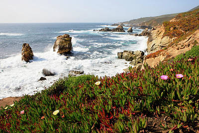 Of Big Sur Beach Photograph - Breaking Waves And Flowers by Tom Norring