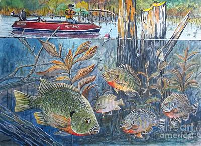 Catfish Mixed Media - Bream Fishing by Don Hand