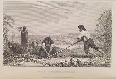 Breast Ploughing At Chiloe Print by British Library