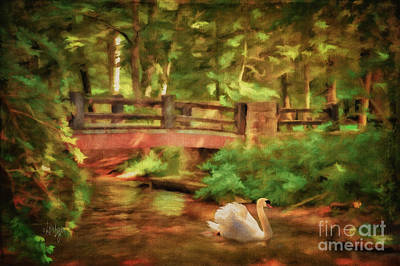 Bridge And Swan Print by Lois Bryan