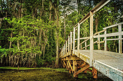 Caddo Lake Bridge Into The Forest Print by Tamyra Ayles