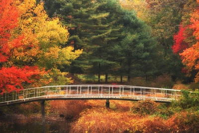 Bridge To Autumn Print by Karol Livote