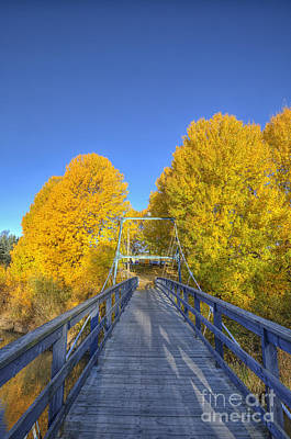 Salo Photograph - Bridge To Autumn by Veikko Suikkanen
