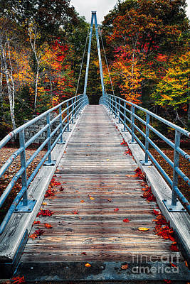 Bridge To The Nature Print by George Oze