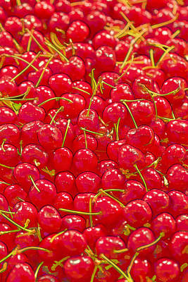 Cherry Photograph - Bright And Red by Scott Campbell