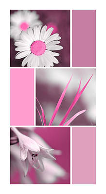 Blooming Digital Art - Pink Flowers Collage by Christina Rollo
