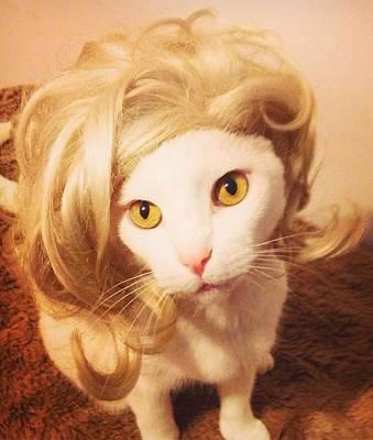 Bardot Photograph - Brigitte  by Monica Maroon