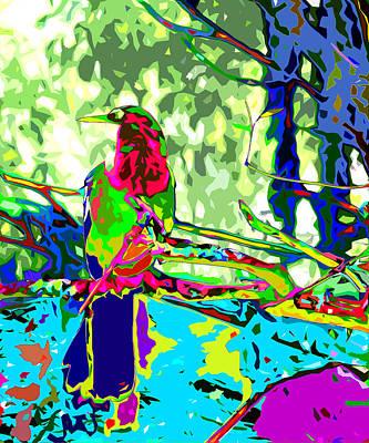 Anhinga Digital Art - Brilliant Plumed Snake Bird by Norman Johnson