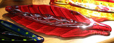 Brilliant Red Feather Glass Dish Print by Donna Spencer
