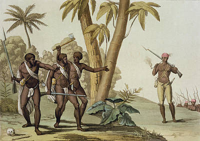 Slaves Drawing - British Guyana Surinam, The Slave by G. Bramati