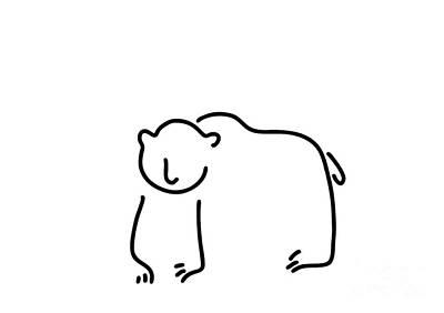 Bear Paw Drawing - Brown Bear Black Bear by Lineamentum