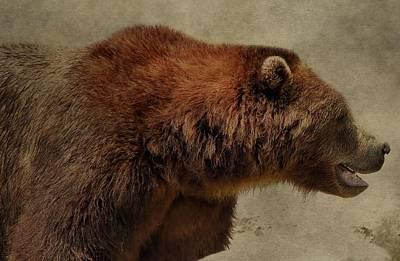 Brown Bear Hunting Print by Dan Sproul