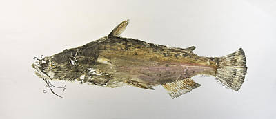 Catfish Mixed Media - Brown Bullhead Catfish by Nancy Gorr