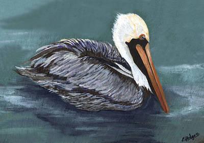 Yellow Beak Painting - Brown Pelican On Water by Elaine Hodges