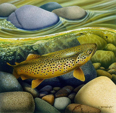 Flyfishing Painting - Brown Trout by Jon Q Wright