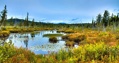 Fir Trees Photograph - Browns Tract Inlet Waterway by David Patterson