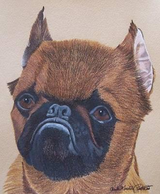 Griffon Drawing - Brussels Griffon by Anita Putman