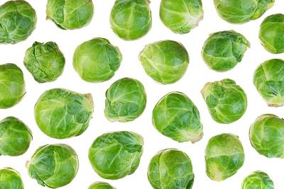 Cabbage Photograph - Brussels Sprouts by Jim Hughes