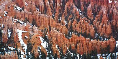 Bryce Canyon National Park Photograph - Bryce Canyon Series Nbr 20 by Scott Cameron