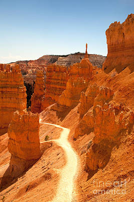 Bryce Canyon Trail Print by Jane Rix