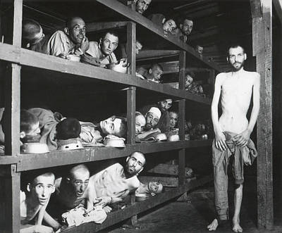Genocides Photograph - Buchenwald Concentration Camp Survivors by Everett