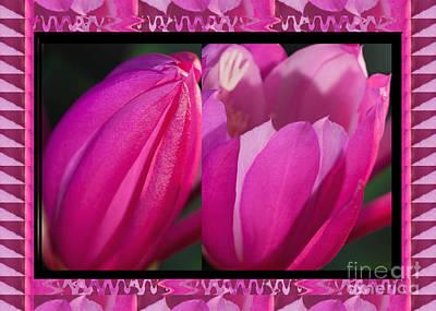 Champion Mixed Media - Budding Pink Flower Show by Navin Joshi