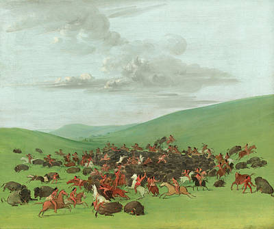George Catlin Painting - Buffalo Chase. A Surround By The Hidatsa by George Catlin