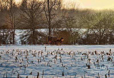 Amish Photograph - Buggy At Sundown by David Arment