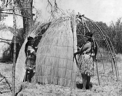 Indigenous Culture Photograph - Building A Yokut House by Underwood Archives Onia