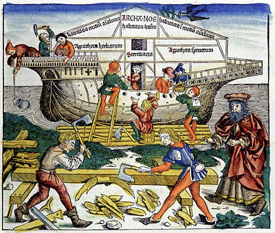 Building Noah's Ark Print by Cci Archives