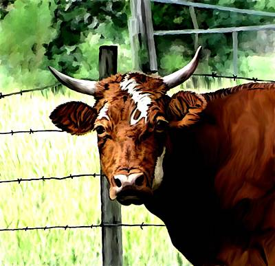 Cows Mixed Media - Bull by Karen Sheltrown