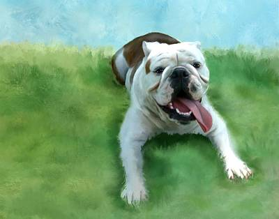 Bulldog Original by Colleen Taylor