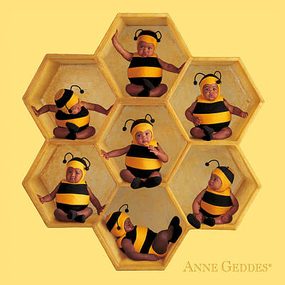 Bee Photograph - Bumblebees by Anne Geddes