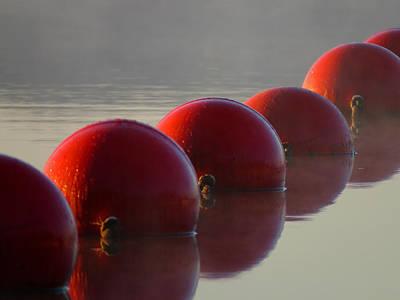 Gallery Website Photograph - Buoys In Fog by Dianne Cowen