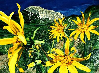 Sunflower Watercolor Painting - Burst Of Summer by Barbara Jewell