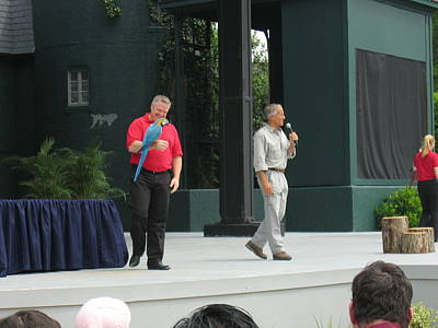 Park Photograph - Busch Gardens - Animal Show - 121210 by DC Photographer