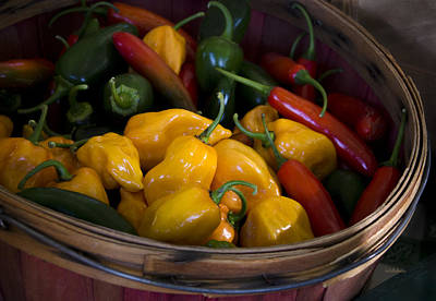 Locally Grown Photograph - Bushel Of Peppers by Julie Palencia