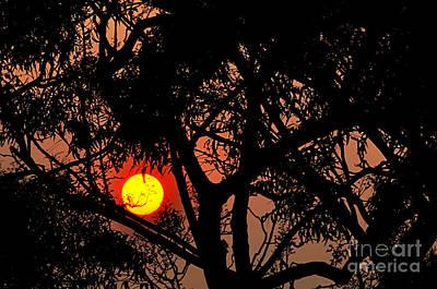 Smokey Sky Photograph - Bushfire Sunset by Kaye Menner