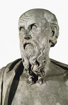 Statue Portrait Photograph - Bust Of Hesiod. 8th C. Ad. Greek Art by Everett
