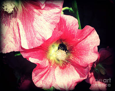 Busy Bee Print by Connie Ens