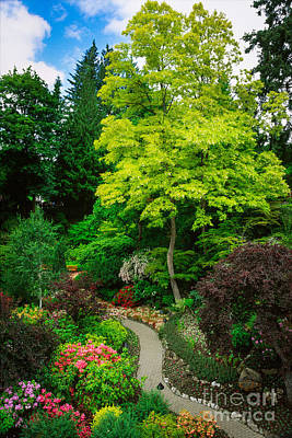 Vancouver Island Photograph - Butchart Gardens Pathway by Inge Johnsson