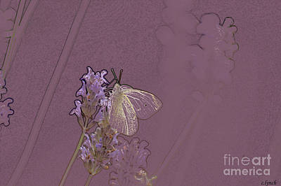 Abstract Forms Digital Art - Butterfly 1 by Carol Lynch