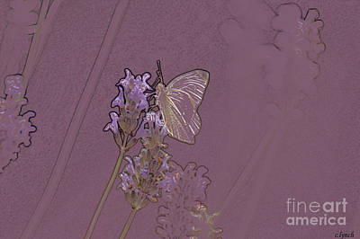 Abstract Forms Digital Art - Butterfly 2 by Carol Lynch