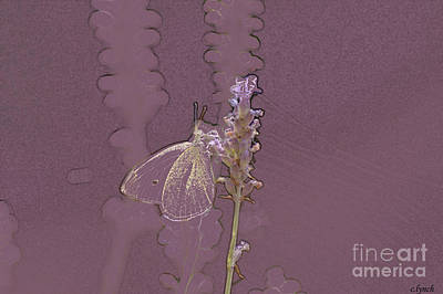 Abstract Forms Digital Art - Butterfly 3 by Carol Lynch