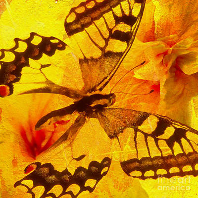 Butterfly Digital Art - Butterfly And Yellow Hibiscus by Olga Hamilton