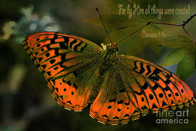 Butterfly Creation  Print by Beverly Guilliams